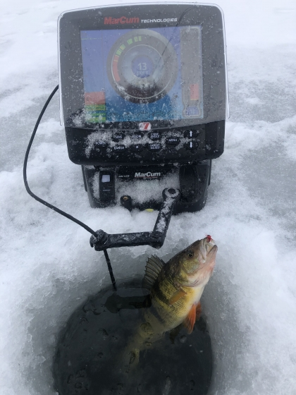 Door County Ice Fishing Perch Fishing