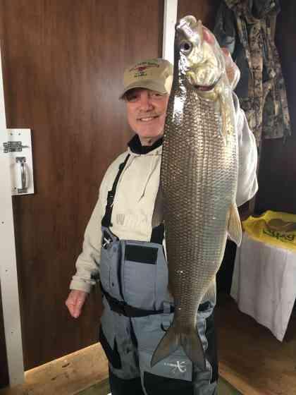 Door County Ice Fishing Whitefish
