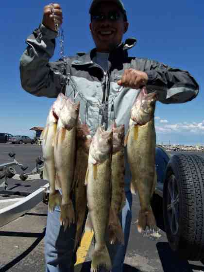 Green Bay Walleyes