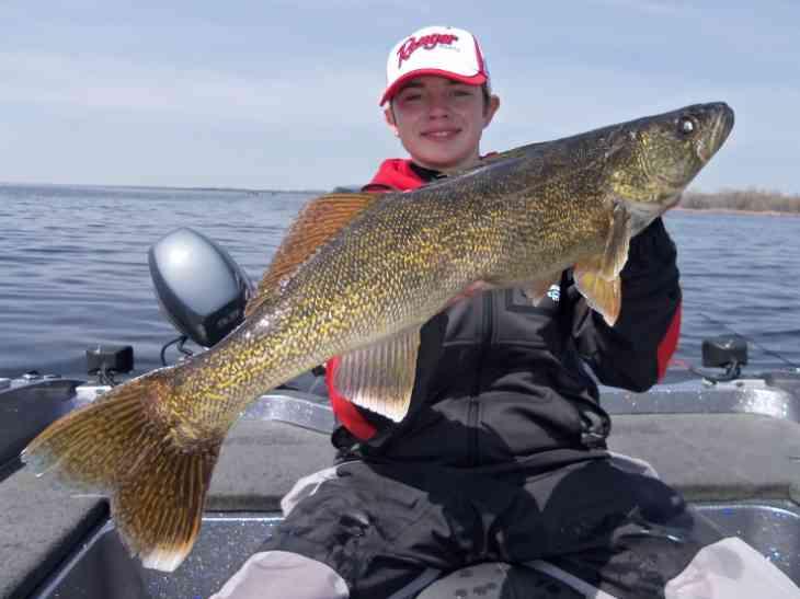 Green Bay Walleye