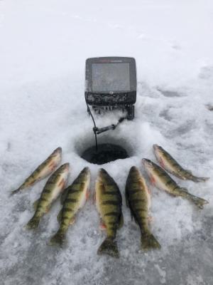 Door County Ice Fishing Perch Fishing