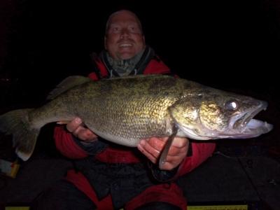 Sturgeon Bay Walleyes at Night